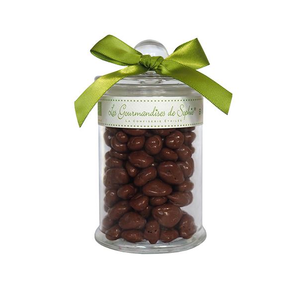 Raisins chocolat lait - bio