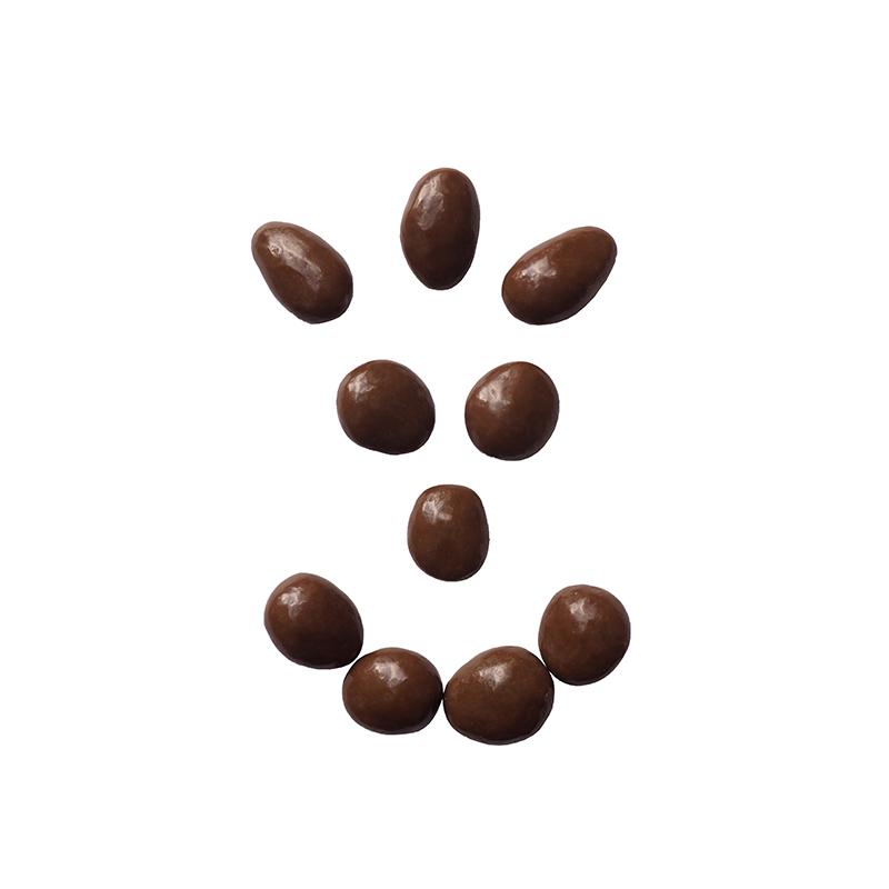 Amandes chocolat lait - bio